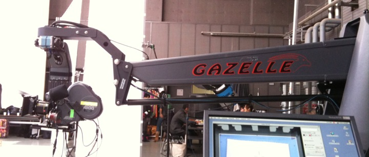 gazelle motion